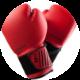 Kick Boxing Fit